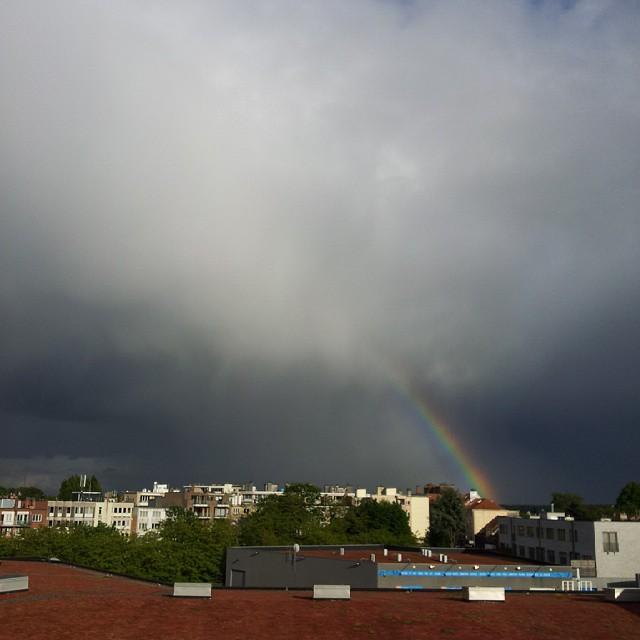 Bruxelles-Rainbow