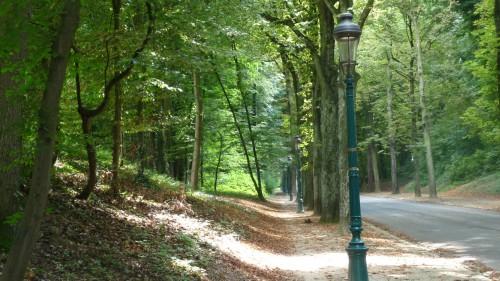 Parc de Woluwé. Crédit photo : LaLibre.be