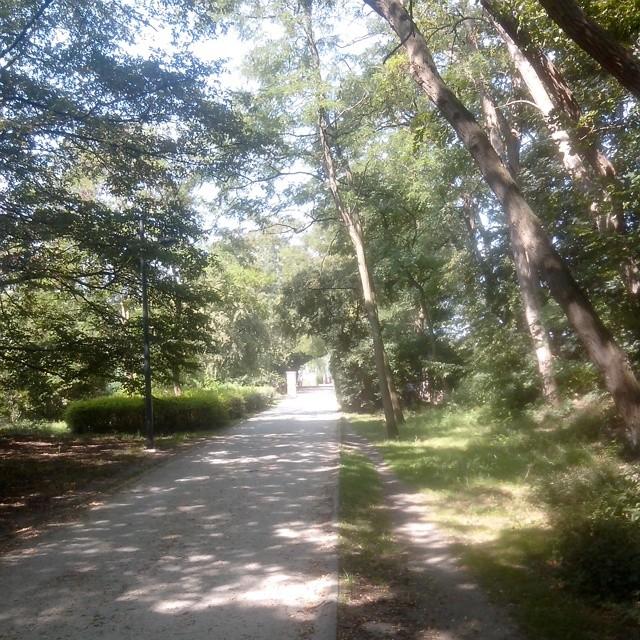 promenade_verte_running